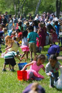 Hundreds of children rush out during the kindergartners' egg hunt at Denton's Easter Eggstravaganza on Saturday at Quakertown Park.David Minton - DRC