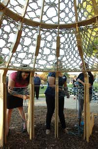 "A sculpture called ""Notty Nest"" takes shape at the launch of the new University of North Texas natural dye garden, just west of Bain Hall, on Oct. 9.David Minton - DRC"