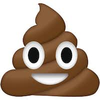 """Denton City Coulcilwoman Keely Briggs spotted a design flaw in one of the 54 designs for downtown signage. An image of the courthouse """"looks kind of like a poop emoji.Emoji Island"""