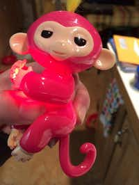 Louisiana resident Amy B. Stepp's photo shows a fake Fingerling that she received after paying $17 on Amazon for what she thought was a real Fingerlings monkey.AP
