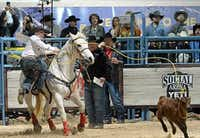 "Denton's Riley Webb dismounts after roping a calf at the 2015 Roy Cooper Invitational 13 & Under Tie-down Calf Roping held in Las Vegas in conjunction with the National Finals Rodeo. Webb, who was 12 at the time, won the event.<p><span style=""font-size: 1em; background-color: transparent;"">Fletch Photos & Design</span><br></p><p></p>"