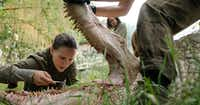 "Natalie Portman and Gina Rodriguez in Paramount Pictures' ""Annihilation.""Courtesy photo"