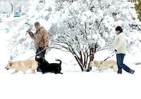 At Nette Shultz Park, Chad Bourgeois and his wife, Esther, walk their labs in 10 inches of snow that fell in February 2010.Al Key/DRC File photo