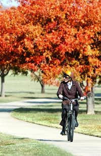 Stacey Thompson rides his bike to work Monday along the fall color-emblazoned sidewalk at North Lakes Park.Al Key