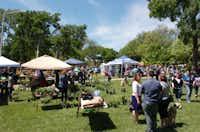 Denton Redbud Festival, Saturday, April 20, 2013, at Quakertown Park in Denton, TX.David Minton - DRC