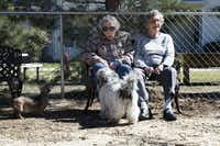 Bobbie Rivers, left and Edith Polich enjoy the weather with their dogs, Miss Murphy, left, and Buddy, at the new park.Tomas Gonzalez
