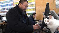 Chinese artist and activist Ai Weiwei is the focus of Alison Klayman's documentary, Ai Weiwei: Never Sorry.Never Sorry LLC